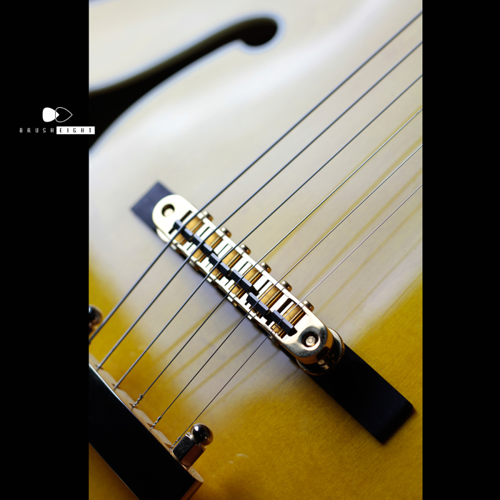 "【SOLD】Ibanez  PM2-AA ""Pat Metheny Signature"" 2013"