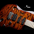 【8SALE】T's Guitars DTL Hollow 24 Custom  Quilted Maple 2017's